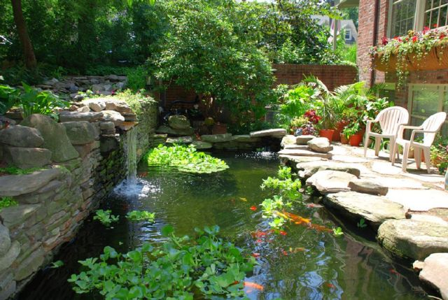 Garden Backyard Design Ideas With Fish Ponds 04