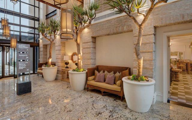 Minimalist Home Garden with Aloe Tree