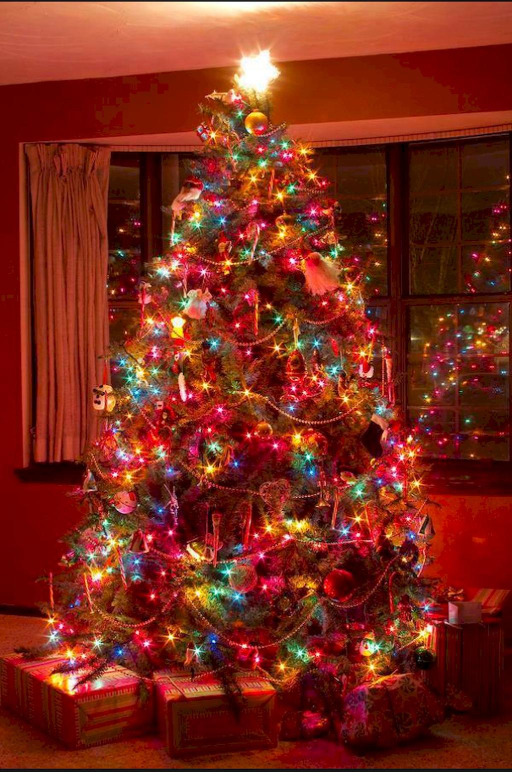Nice Outdoor Christmas Lights Decoration Ideas