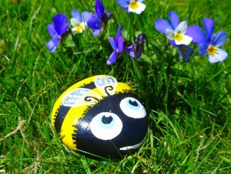 Painted Rock Bumble Bee.jpg
