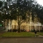Stunning Outdoor Christmas Lights Decoration Ideas