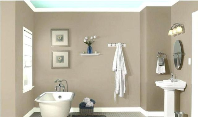 Wall Paint Color Combination Ideas For Bathrooms 4