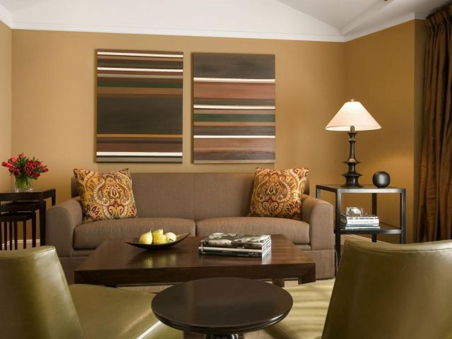 Wall Paint Color Combination Ideas in the Living Room 1