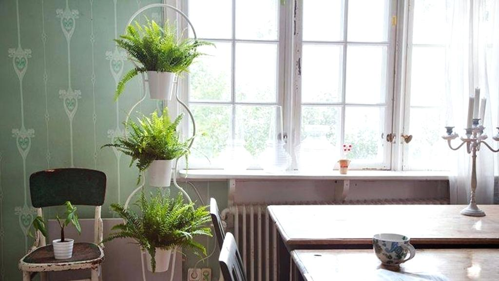 Diy Plant Stand Ideas